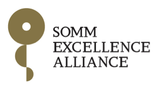 SOMMA Press Release: Business supports Spanish science