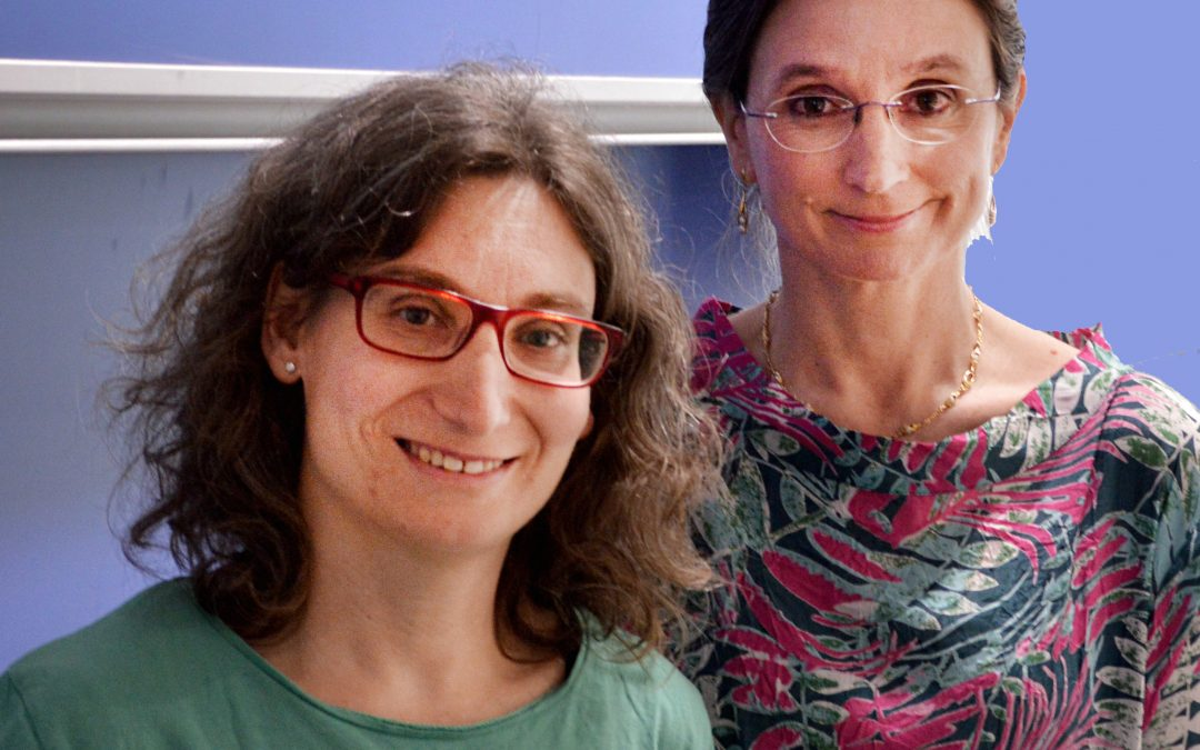 Meet the algebraic topologist who helps biologists to analyse the brain